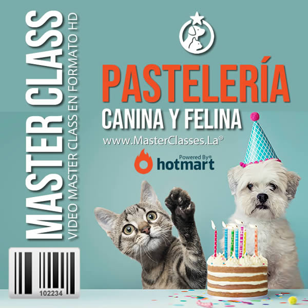 como preparar pasteles para perros o gatos