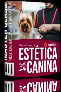 caja - curso estetica canina