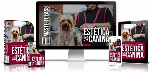 curso de estetica canina