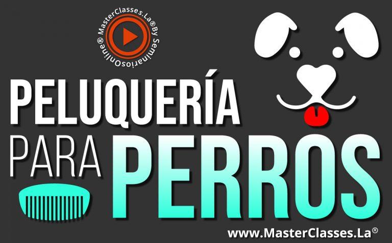 Curso Peluqueria Para Perros - MasterClasses